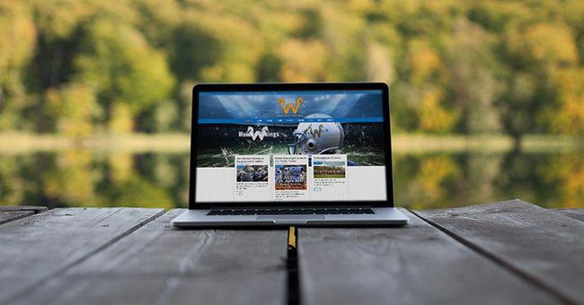 BEWEGTERBLICK Weiden Vikings Webseite Tirschenreuth